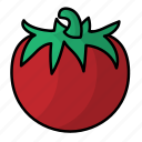food, fruit, tomato, vegetables icon