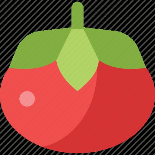food, tomato, vegetable icon