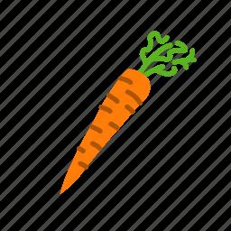 carrot, food, organic, salad, vegetable, vegetarian icon