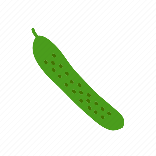 cucumber, farm, food, organic, vegetable, vegetarian icon