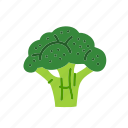 broccoli, farm, food, organic, vegetable, vegetarian icon