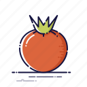 cooking, food, kitchen, plant, red, tomato, vegetables icon