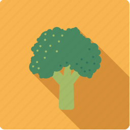 broccoli, cabbage, food, vegetable, vegetarian icon