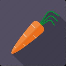 carrot, food, root, vegetable, vegetarian icon