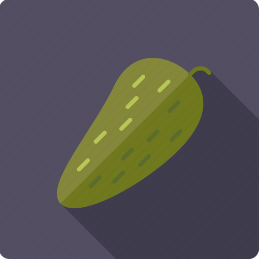food, gherkin, gourd, pickle, vegetable, vegetarian icon