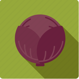 cabbage, food, red, vegetable, vegetarian icon