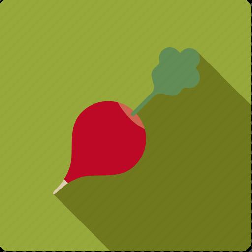 food, radish, red, root, vegetable, vegetarian icon
