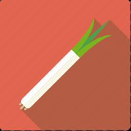food, leek, onion, spring, vegetable, vegetarian icon