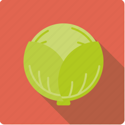 cabbage, food, green, vegetable, vegetarian, white icon