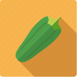 food, gourd, vegetable, vegetarian, zucchini icon