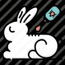 insecticide, medical, pet care, rabbit, vet, veterinarian, veterinary icon