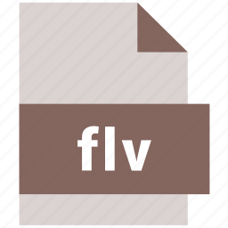 extension, file, file format, flv, video file format icon