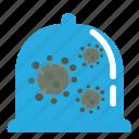 corona, coronavirus, covid19, quarantine, virus