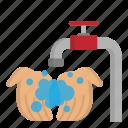 corona, coronavirus, covid19, hand washing, virus