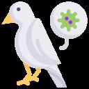 animal, bird virus, disease, epidemic, infection, transmission, virus