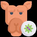 camel virus, disease, epidemic, infection, mers, transmission, virus