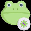 corona, disease, epidemic, frog virus, infection, transmission, virus