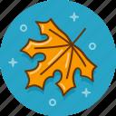 autumn, fall, leaf, novermber, october, season, september icon