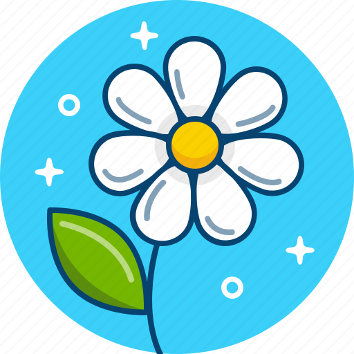 Camomile, daisy, flower, spring icon - Download on Iconfinder