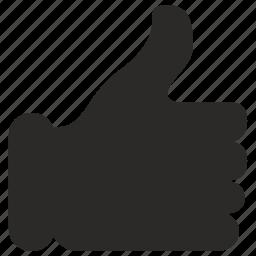 accept, elections, right, vote icon