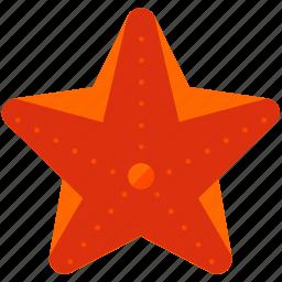 activities, animal, nautical, ocean, sea, starfish, water icon