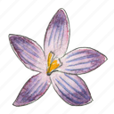 crocus, flower, garden, plant, spring icon