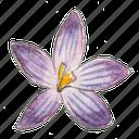 spring, plant, flower, garden, crocus icon