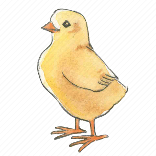 bird, chick, chicken, easter, spring, standing icon