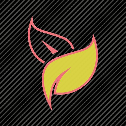 autumn, fall, leaf, leaves, nature, season, spring icon