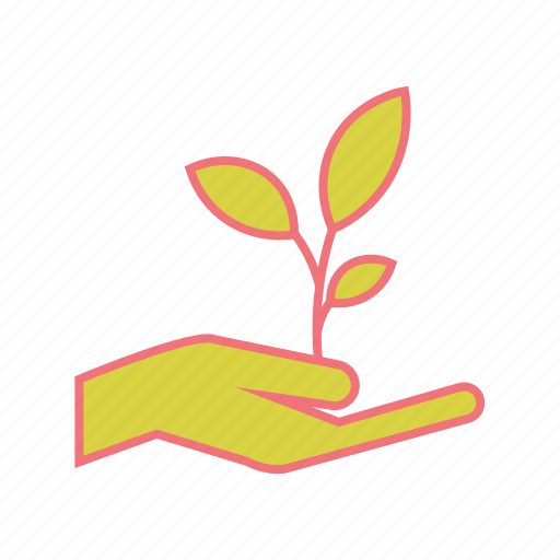 donate plant, ecology, horticulture, nature, plant, seedling, young plant icon