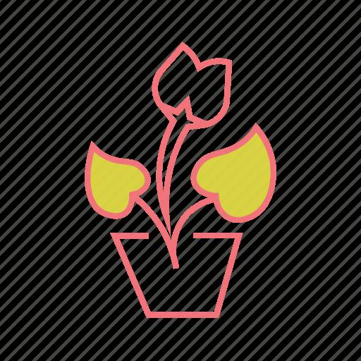 flower, garden, house plant, nature, pot plant, young plant icon