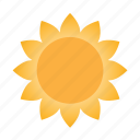 forecast, heat, hot, sun, sunny, weather
