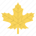 fall, leaf, leaves, nature, season, spring icon