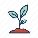 horticulture, leaf, nature, plant, season, young plant icon