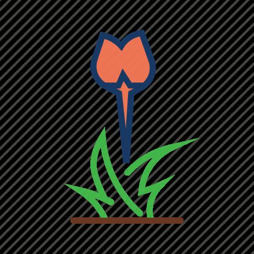 floral, flowering season, garden, grass, nature, spring icon