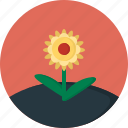 flower, spring icon