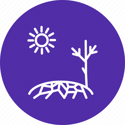 drought, sprout, sun icon