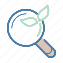 leaf, magnifier, organic search, organic seo, research, search, searching icon