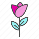 flower, gift, valentine, wedding icon