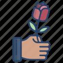 hand, flower, rose
