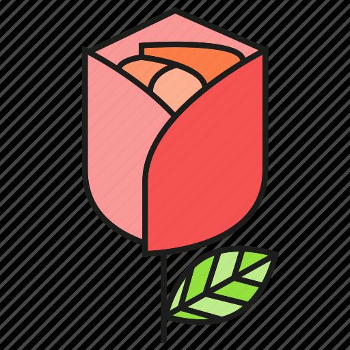 gift, present, rose, valentine icon