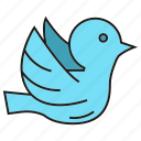 animal, bird, dove, fly, peace, pigeon, wing icon