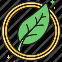 green, leaf, leafy, organic icon
