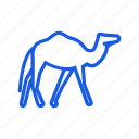 animal, camel icon