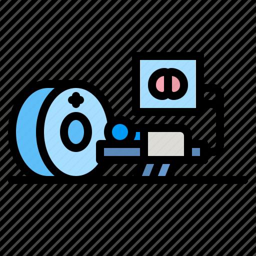 Kidney, urologist, urology, medical, healthcare icon - Download on Iconfinder