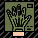 radiography, bone, x, ray, hand