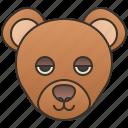alaska, bear, brown, grizzly, wildlife