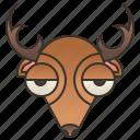 antler, deer, grazing, hunt, stag