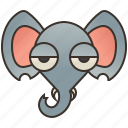 elephant, ivory, mammal, trunk, wildlife icon