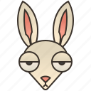 bunny, burrow, easter, hare, rabbit icon